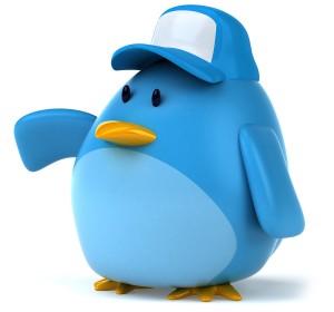 twitter-para-novatos