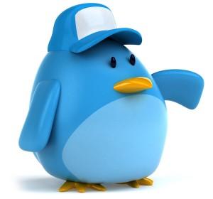 twitter-para-novatos2